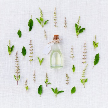 Great Essential Oils for Being Outdoors