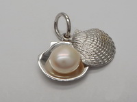 Pearl in Oyster (My Testimony) Pendant