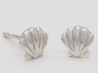 Scallop Seashells Earrings