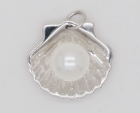 White Scallop Shell (10mm Pearl) Pendant