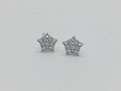 Clear Snowflakes Earrings